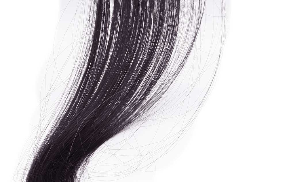 The Secrets in your Strands